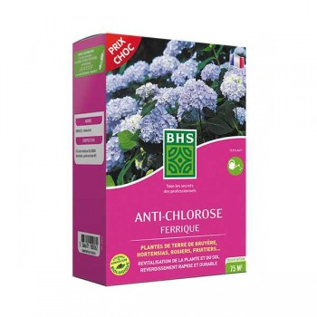 ANTI - CHLOROSE Ferrique